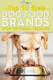 best 25 dog food analysis ideas on pinterest dog food reviews