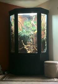 how to make fish tank decorations at home best 25 reptile cage ideas on pinterest snake enclosure