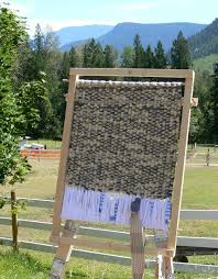 Rug Weaving Looms Featured Artist Lynne Milsom Of Llamas In The Raw Sanctuary With