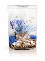 biorb ornament rif aquastorexl
