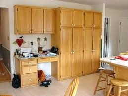Oak Kitchen Pantry Storage Cabinet Kitchen Pantry Cabinets Makushina