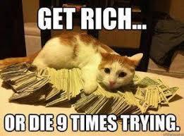 Rich Cat Meme - mob boss cat does not apreciate your advances by thebackhander