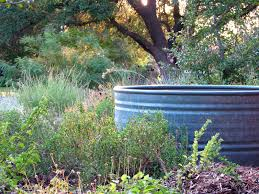 stock tanks as swimming pools google search landscaping