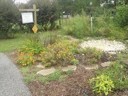 Botanical Gardens Dothan Alabama Dothan Area Botanical Gardens Butterfly Garden Kinsey Al