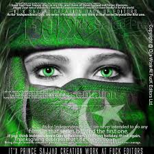 happy days first thanksgiving 14 august pakistan flag cover photos for facebook my picture