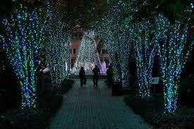 Botanical Garden Atlanta Lights Botanical Garden Light Show U2013 Erikhansen Info