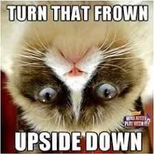 Grumpy Cat Meme Happy - happy cat meme tumblr image memes at relatably com
