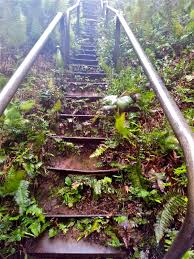 Hawaii Haiku Stairs by Happy But Not Unscathed May 2012