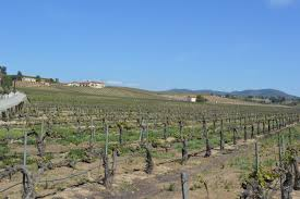 wine country temecula homes for sale