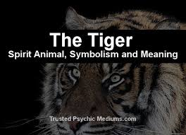 the tiger spirit a complete guide to meaning and symbolism