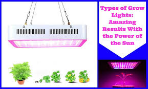types of grow lights types of grow lights amazing results with the power of the sun