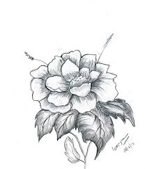 pictures artistic flower pencil sketch drawing art gallery
