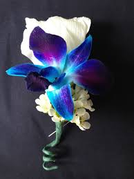 blue boutonniere 23 best wedding flowers images on blue orchids