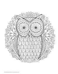 coloring pages owls adults chuckbutt