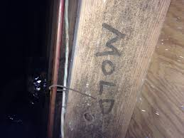 mold treatment crawl space and basement waterproofing in atlanta