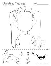 best 25 five senses preschool ideas on pinterest senses