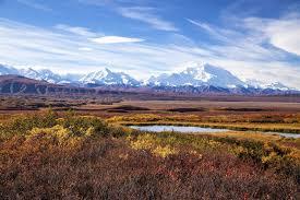 brilliant colors of denali national park alaska wallpapers map of america u0027s national parks