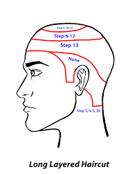 mens haircuts step by step картинки по запросу haircuts diagram pdfs technic men haircut