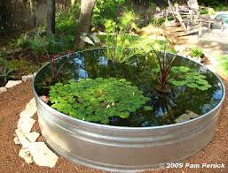 Backyard Fish Pond Ideas Top 10 Garden Aquarium And Pond Ideas To Decorate Your Backyard