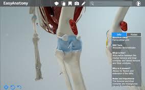 Interactive Knee Anatomy Anatomy Of The Canine Knee Easyanatomy