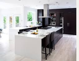 37 best kitchen design images on pinterest kitchen designs