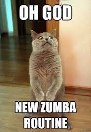 Zumba Meme - oh god new zumba cat meme cat planet cat planet
