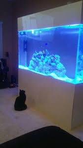 3 watt led aquarium lights 3 15k 100 watt led flood lights and 2 50 watt blue led flood lights