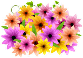 decorative flower flowers decoration png clip art image gallery yopriceville