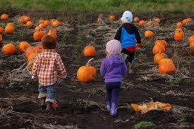 top kid friendly halloween events in victoria