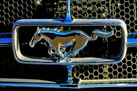 mustang grill emblems 1965 ford shelby mustang grille emblem photograph by reger