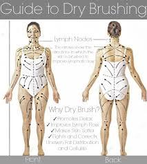 body chart for dry skin brushing 12 5 14 beauty blog makeup