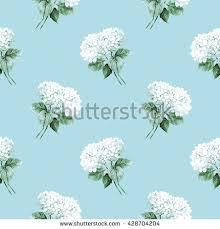 White Hydrangeas Two White Hydrangeas Watercolor Flower Illustration Stock