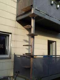 katzenleiter balkon balkon kräuter für katzen 10 26 19 egenis inspirierend