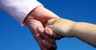 herring u0026 mills law child custody child support raleigh nc
