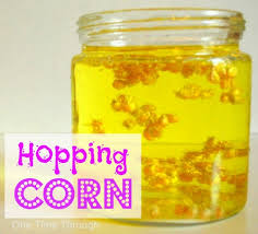 hopping corn science activity one time through