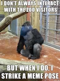 Ape Meme - the most interesting ape in the world meme on imgur