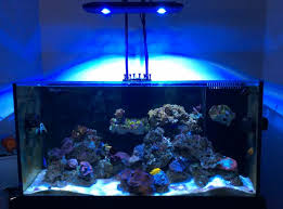 led reef lighting reviews review kessil ap700 light fixture reef2reef saltwater and reef