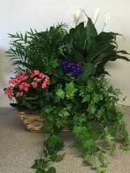 Flower Shops In Snellville Ga - flowercraft inc local florist in atlanta flower shop in