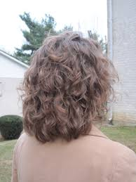 haircut for fine curly hair the back of layered hair related back view of bob