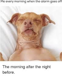 Morning After Meme - me every morning when the alarm goes off the morning after the night