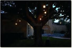 Portfolio Low Voltage Landscape Lighting Low Voltage Outdoor Landscape Lights Portfolio Outdoor Low Voltage
