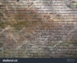 victorian garden walls victorian garden brick wall whitewash stock photo 35545246