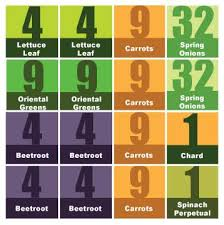 Square Foot Garden Layout Ideas Square Foot Plan 4x4 Jpg 358 359 My Favourite Pinterest