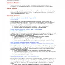 template personal resume samples fascinating personal template