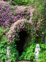 garden design garden design with evergreen potted plants for deck