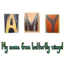 my name out of butterfly wings picture of the butterfly palace