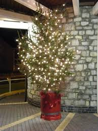 lions club of bridgend tree of light