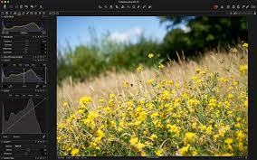 Pro Landscape Software by Capture One Tutorials