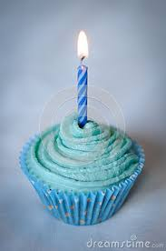 Blue Birthday Cupcakes Nvsi