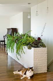 modern indoor planters patio contemporary with modern landscape